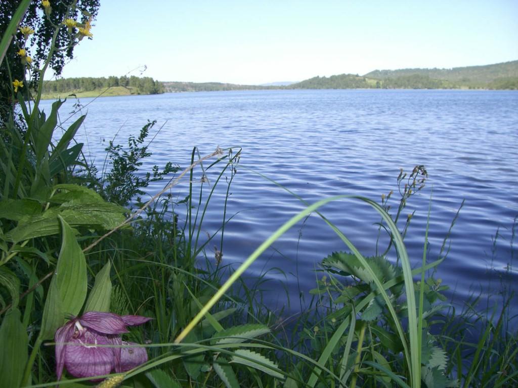 озеро Цинголь2